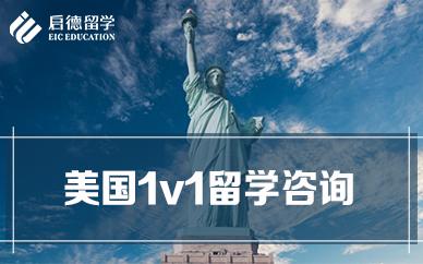 美国1v1留学咨询