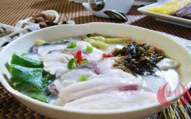 衡陽魚粉培訓