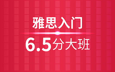 雅思入门冲6.5分班