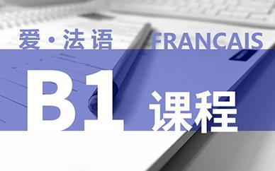 法語B1課程