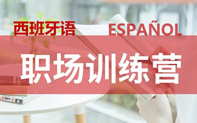 西班牙B2-C1课程