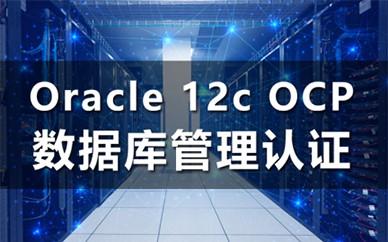 Oracle数据库认证培训课程