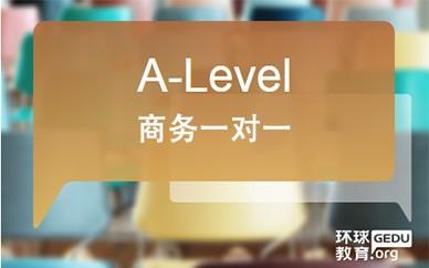 A-LEVEL商务一对一课程