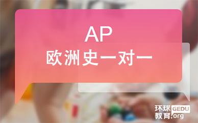 AP欧洲史一对一课程