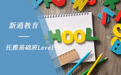 南京新通教育托雅基礎班A-Level培訓班