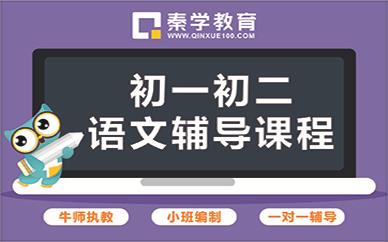 南寧秦學教育初中語文輔導班