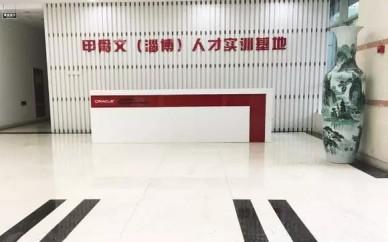 """2021来淄博甲骨文学IT,踏上人生""""薪""""高度"""