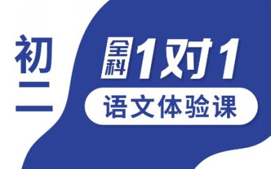秦皇岛文化路一对一初二语文1对1个性化辅导课程锐思教育