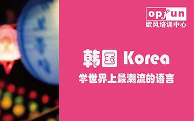 北京欧风韩语小班培训班
