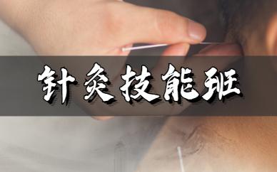 湖南颐而康中医针灸培训班