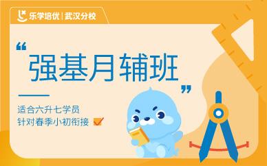 武汉乐学教育强基月辅班