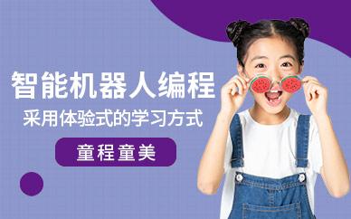 上海童程童美智能机器人编程培训班