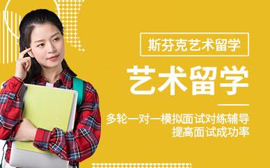上海斯芬克VIP直通车培训课程