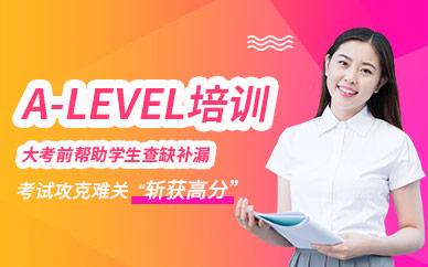 武汉斯芬克A-level培训课程