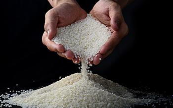 磨米浆/调米浆