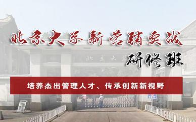 北京乾元商学院北大新营销实践研修班