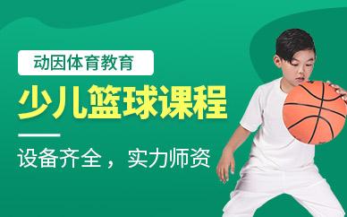 上海少儿篮球培训课程