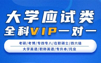 北京新东方大学应式类全科VIP一对一培训课程