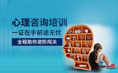 徐州优路教育心理咨询师培训课程