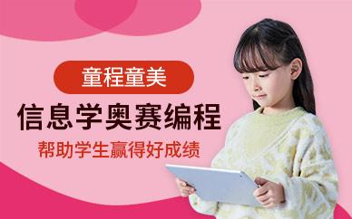 徐州童程童美信息学奥赛编程培训班